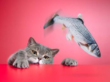 Spralla Sprattlande Fisk Kattleksak