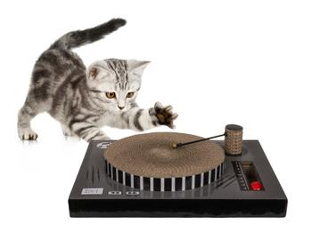 Vinylspelare Klösbräda till Katt