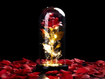 Spralla® Förtrollad Ros Lampa