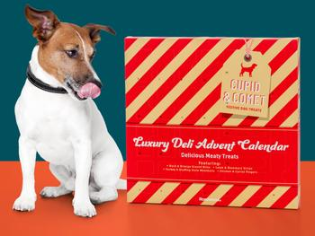 Cupid & Comet Luxury Hundkalender