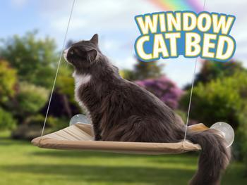 Kattbädd För Fönster